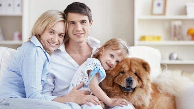 Wills & Trusts dog-young-family Direct Wills Kings Cross